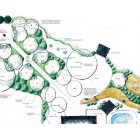 Habitat Creation Advice-Email Consultancy