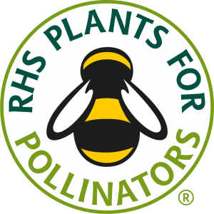 Pollinators 40 Plug Plants Mix